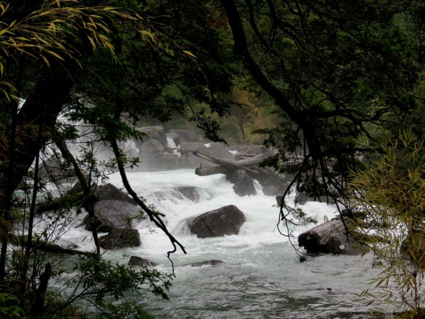 Cascada del Rio Cisne. Parque Nacional Los Alerces