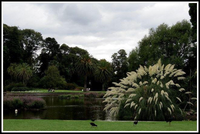 jardin botanico en melbourne